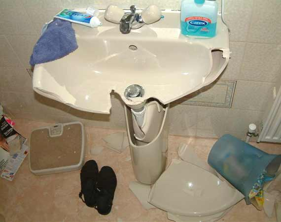 Broken bog of the week brokenbog shop for A bathroom item that starts with n